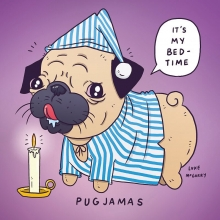"""I'm sure someone else has made a """"pugjamas"""" joke but it won't have been as good as this.  #weewillywinky #pug #pajamas #dog #nightcap #illustration #drawingaday"""